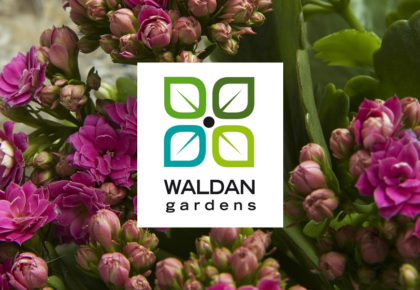 Waldan Gardens Menu – March 23, 2019